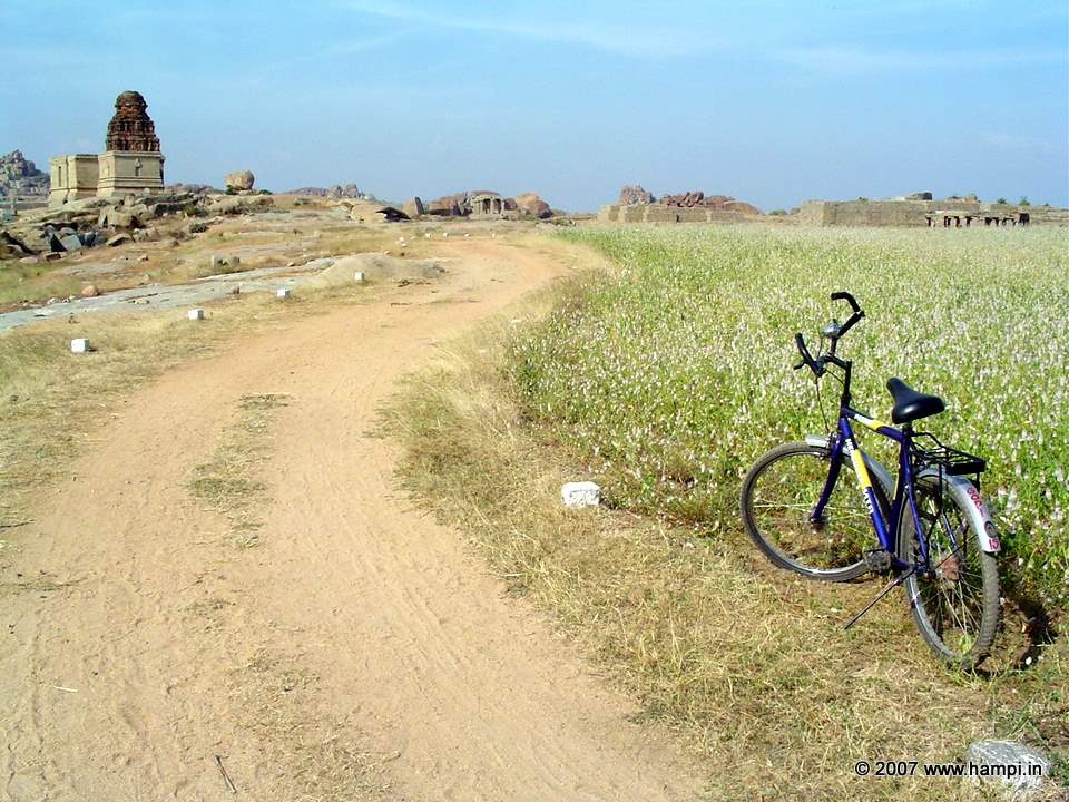 bicycles are fun and smart way to explore the ruins